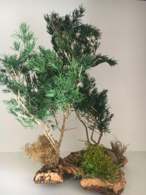 vegetazione per presepio